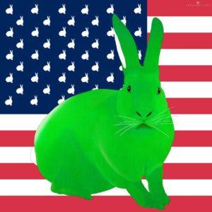 Une édition limité des lapins drapeaux US par Thierry Bisch
